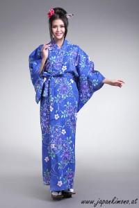 Kimono 4538