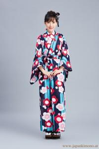 Kimono 3523