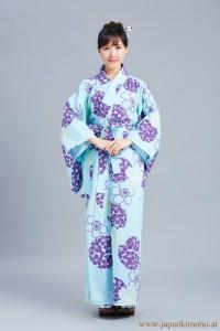Kimono 4531