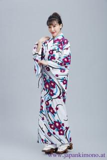 Kimono 8511