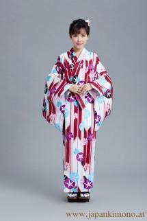 Kimono 6536XXL